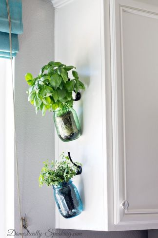 Mason jar herb garden: the Pinterest version