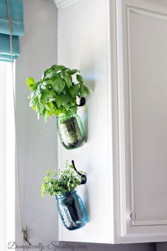 Mason jar herb garden: the Pinterest version
